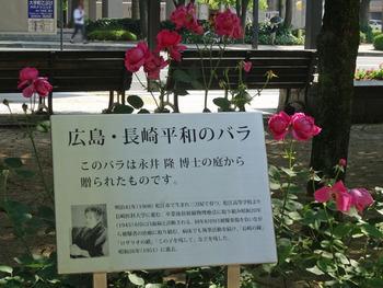 コピー広島DSC09070.jpg